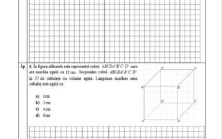 Evaluarea Națională 2021. Model de subiecte pentru matematică - 9