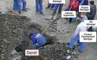 Dorel2