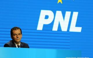 Ludovic Orban, PNL