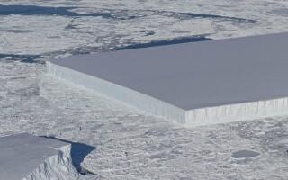 aisberg dreptunghiular