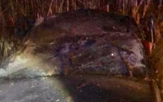 Tânăr de 18 ani mort într-un accident provocat de un șofer băut și fără permis