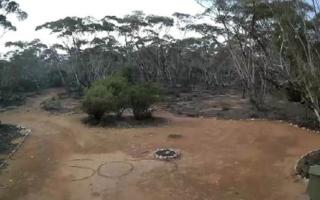 femeie disparuta australia