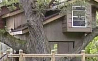 Viata in casa din copac!