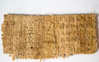 manuscris, traducere, Iisus a fost casatorit