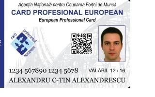 card profesional - sample