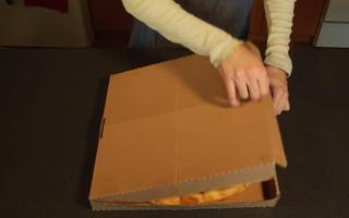 cutie, pizza