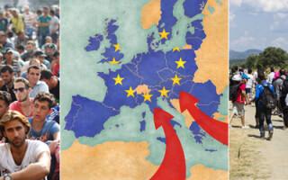 cover prima imigranti in UE