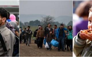 refugiati cover