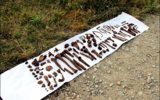 oseminte din avionul cazut in Siberia