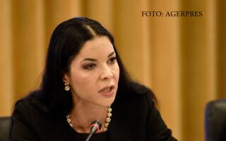 Ana Birchall, presedintele Comisiei pentru afaceri europene,