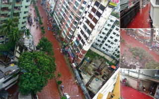 Bangladesh, sange, strazi, Eid al-Adha