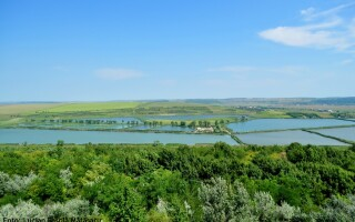 Delta Moldovei, Jijia