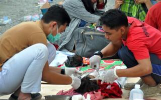 cutremur indonezia tsunami - 2