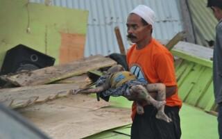 cutremur indonezia tsunami - 8