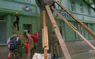 Coreea de Nord lovită de un taifun violent