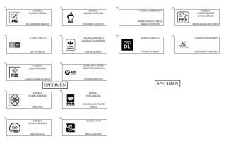 Cum vor arăta buletinele de vot la alegerile prezidențiale