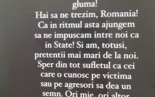 Reacția Alexandrei Stan după ce o fetiță de 13 ani a fost bătută de alte adolescente, în Tîrgu Jiu - 3