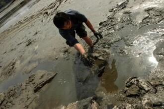 Chinezii protestatari isi cauta hrana prin malul din lacul Herastrau