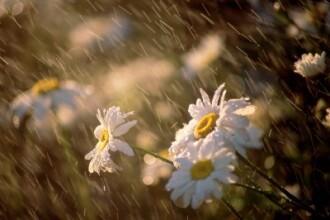 Ne asteapta zile ploioase, dar de Paste vom avea parte de vreme frumoasa