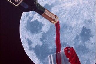 Pinot de