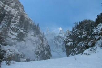 Turistii s-au distrat la munte ca-n plina iarna. Nici ursii n-au lipsit!