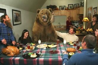 Un animal de casa putin mai neobisnuit! Traiesc impreuna cu un urs grizzly!