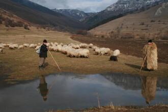 De aproape e mai frumoasa: Romania la pas