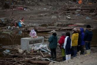 Japonia, la o luna dupa dezastru: 235 de miliarde pagube. Cand isi revine?