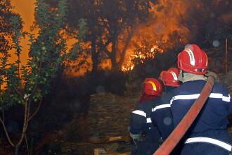 Incendiu puternic in Muntii Sureanu. Peste 30 de hectare de padure au fost afectate