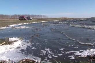 Cadavrul unui barbat, care s-a inecat luna trecuta in Dunare, a fost gasit pe malul fluviului