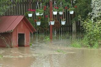 Sute de hectare de terenuri agricole din Mures au fost acoperite de apa