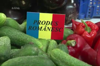 Cum au ajuns castravetii unguresti sa fie produsi in Romania. Afacerea a explodat in vestul tarii