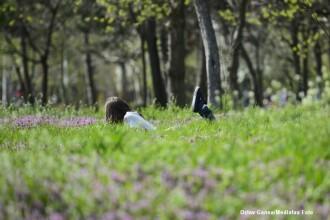 Vremea se incalzeste de 1 mai, iar temperaturile ajung pana la 24 de grade Celsius. Prognoza meteo pana luni