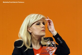 Elena Udrea: Guvernul Ponta nu trebuie sa cada in capcana lui Tariceanu din 2008