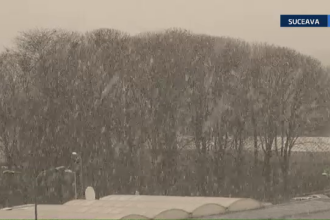 Imaginile unei zile de primavara in care vantul a facut ce-a vrut prin tara. In Bucovina a nins cu fulgi mari. VIDEO