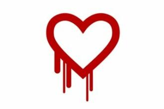 Alerta de securitate majora. Milioane de siteuri, parole si nume de identificare, puse in pericol de un virus cibernetic