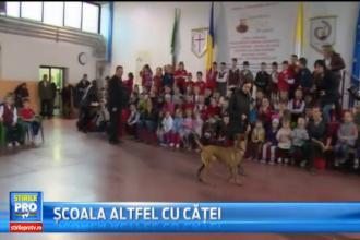 Demonstratii de dresaj canin la un liceu din Oradea, in saptamana