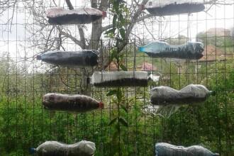 Sezi bland si recicleaza. Zeci de persoane din Cluj au participat la o actiune de ecologizare prin reutilizarea deseurilor