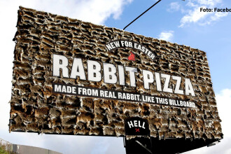 Pizzeria groazei: au ucis sute de iepuri pentru o reclama si se lauda ca fac livrari printr-un vampir transilvanean