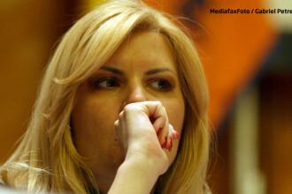 Elena Udrea se apara si spune ca nu are nicio legatura cu Dosarul Microsoft: