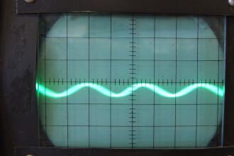 Sunetul inspaimantator care nu a putut fi explicat vreme de 50 de ani. Ce creatura misterioasa il producea de fapt