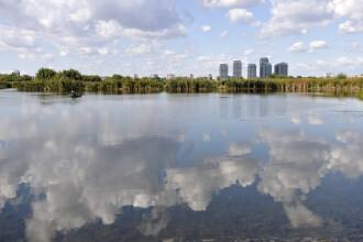 Bucurestiul, pe aceeasi lista cu Londra sau Buenos Aires. Transformarea Lacului Vacaresti in Parc National, in linie dreapta