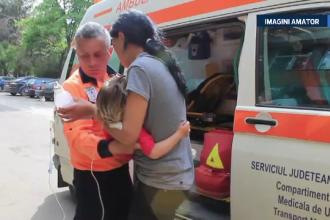Un roi de albine a bagat in spital 7 oameni, in Vaslui. Un copil este in stare grava din cauza veninului