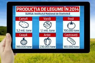 Paradoxul agriculturii din Romania. Fermierii au obtinut cea mai buna recolta din ultimul deceniu, dar mai putini bani