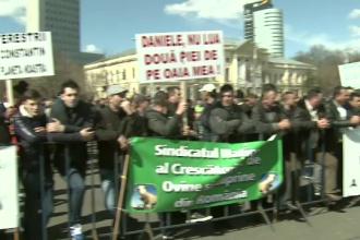 Fermierii au protestat in fata Guvernului. Oamenii se tem ca noile masuri de la Agricultura i-ar putea scoate de pe piata