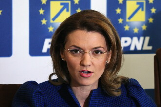 Alina Gorghiu propune scaderea varstei de vot in Romania.