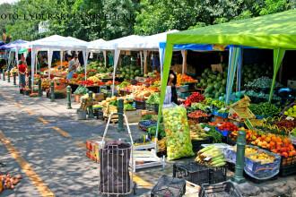 Fructul care isi va dubla pretul anul acesta din cauza vremii. Din exportul sau, Romania castiga sute de mii de euro