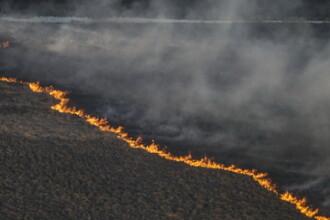 Incendiul de vegetatie de la Cernobil. Reactia autoritatilor din Romania, dupa Comitetul de Urgenta al Ministerului Mediului
