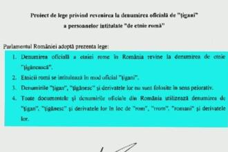 Reactia lui Madalin Voicu, dupa ce un parlamentar a propus ca romii sa se numeasca oficial