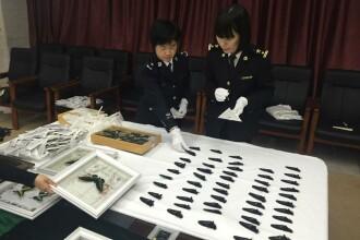 Ce au gasit vamesii chinezi intr-un bagaj de mana. Este cea mai mare captura de acest fel din ultimii 25 de ani